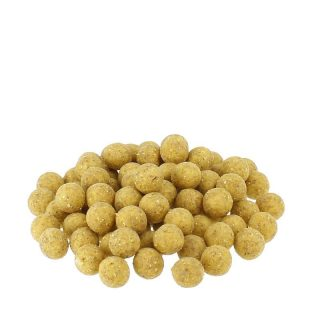 Carpline24 -  Maismehlboilies NEUTRAL - 5 kg 20 mm