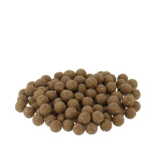 Carpline24 -  Fischmehlboilies NEUTRAL - 5 kg 16 mm